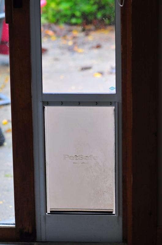 2017-10-11 Dog Door